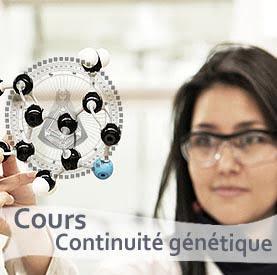 la Continuité génétique dans le Design Humain